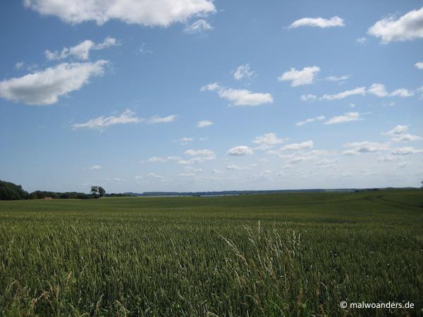 Blauer Himmel und im Hintergrund die Ostsee