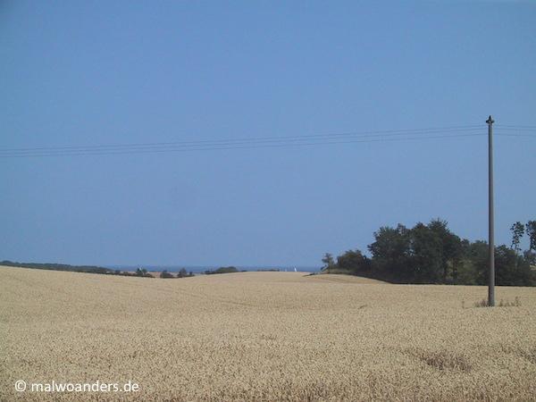 Kornfelder und Meer