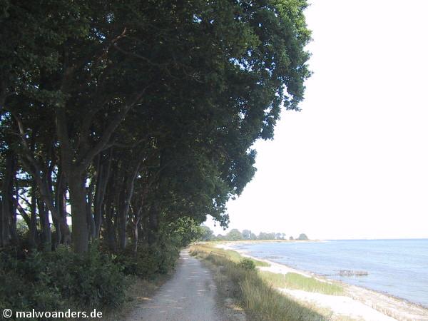 Der Strand ist naturbelassen