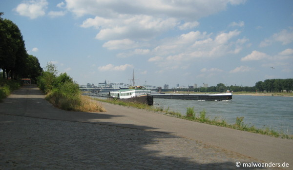 Rhein bei Marienburg