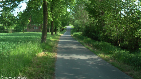 Kleine Straßen durch die münsterländische Parklandschaft
