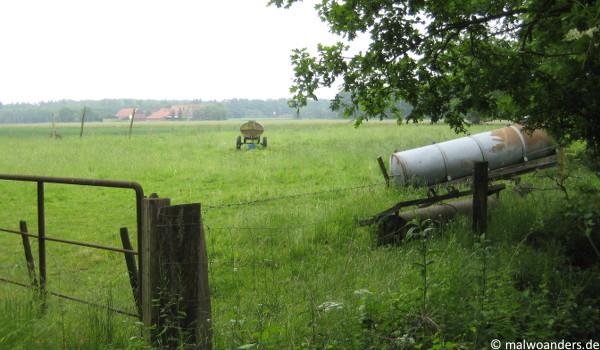 Münsterländische Parklandschaft