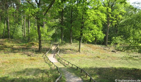 Guntruper Heide