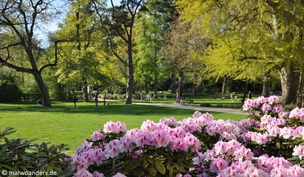 Sclossgarten