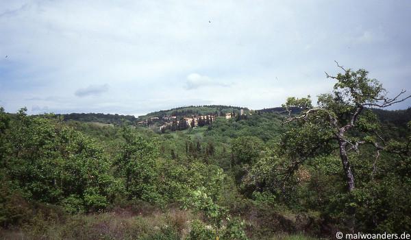 Blick zurück auf Fonterutoli