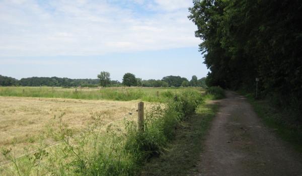 Wege durch die münsterländische Parklandschaft