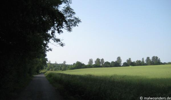 Werseradweg am rechten Flussufer