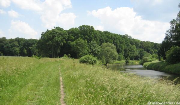 Vor dem Wald verlässt der Weg die Ems nach links