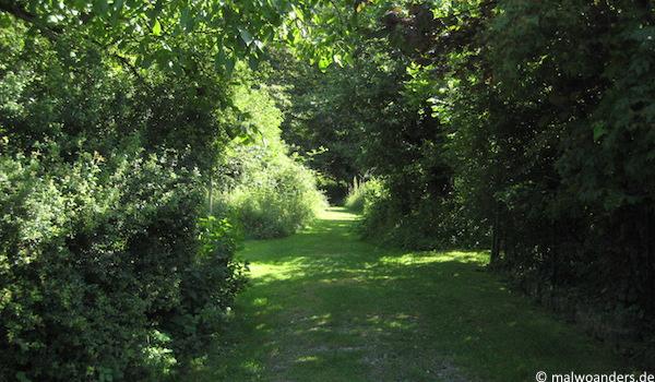 Einstieg in den Teutoburger Wald oberhalb von Lengerich