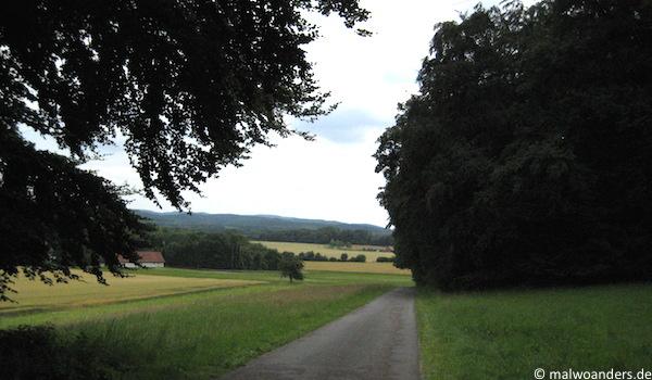 Abstieg vom Teutoburger Wald