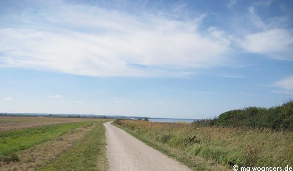 Weg an Feldern entlang