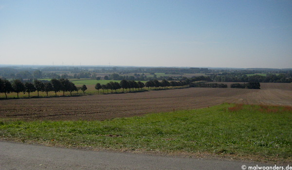 rundwegbaumberge04