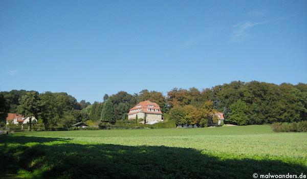 rundwegbaumberge05