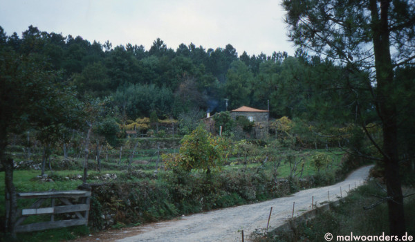 Straße aus dem Dorf hinaus