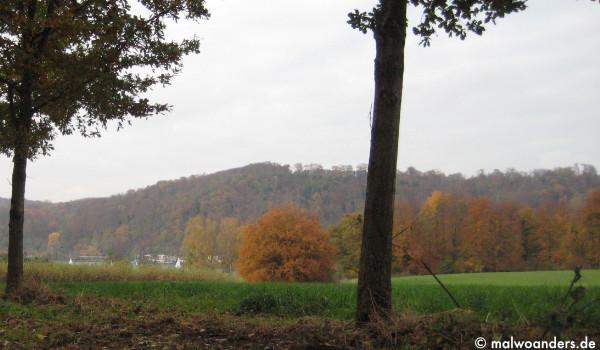 """Blick von der Straße """"Fischlaker Höfe"""""""